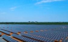 Ecologistas en Acción reclama un Plan Regional de Ordenación de las plantas fotovoltaicas